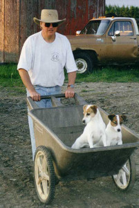 dogs-on-farm two